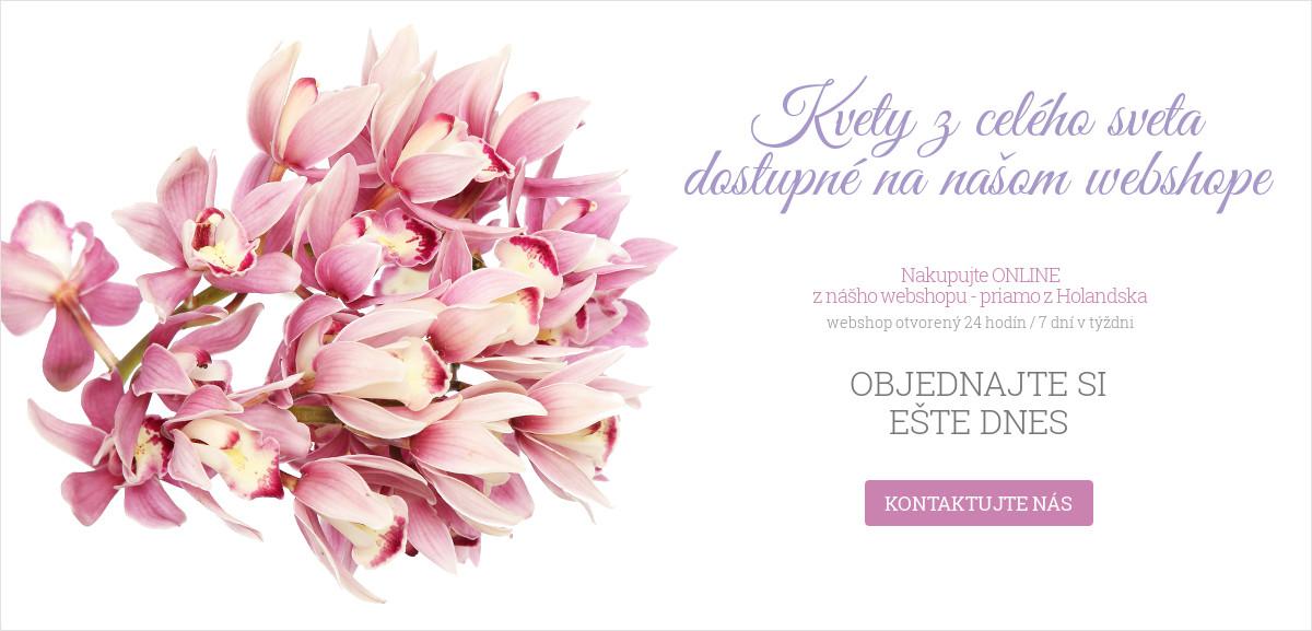 Kvety z celého sveta dostupné na našom webshope